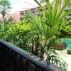 Marrakesh Hua Hin Resort 39 000THB
